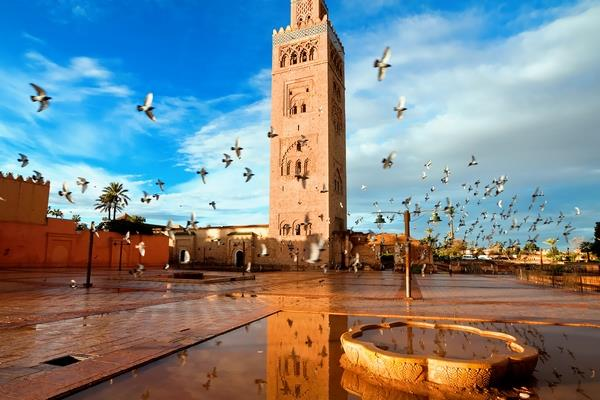 Agadir & Marrakech